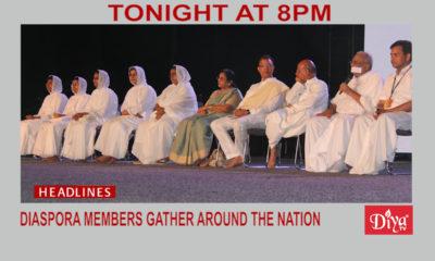 Diaspora members gather